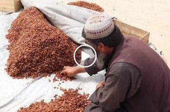 Raisins are rich kind of dry fruit! Watch the video of the preparation