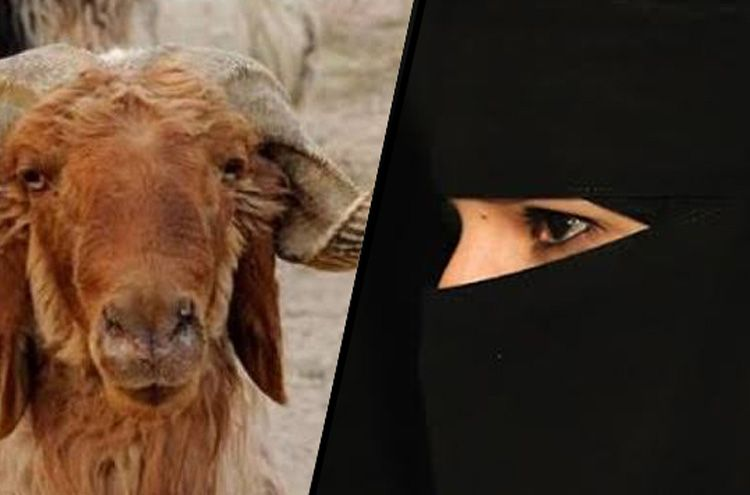 Husband Divorce his wife for not offering guests 'sheep's head'
