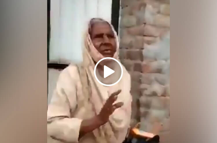 Old Woman Won The Hearts