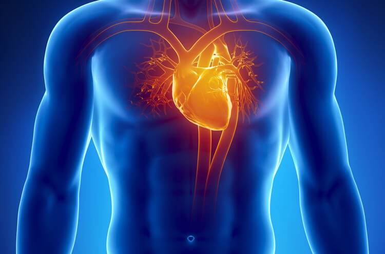 An app that predicts heart failure by listening to a patient's voice