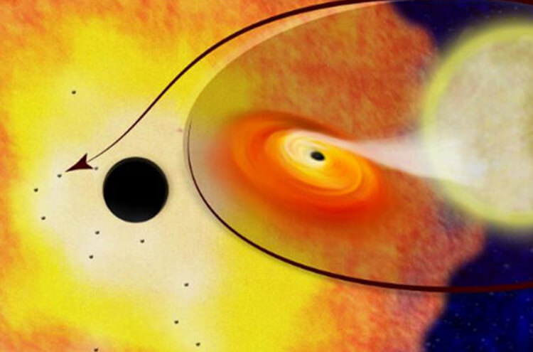 Discovery of a new black hole expanding faster than the sun