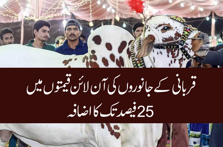 Online prices of sacrificial animals increased by 25%