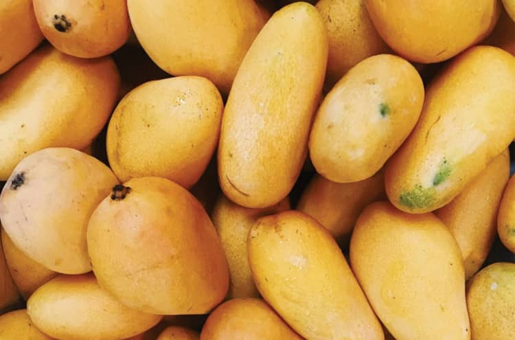 Mango exports increase despite corona